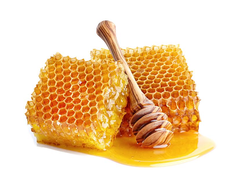 Honig bestellen